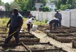 TS WS CC Gardening 46-1